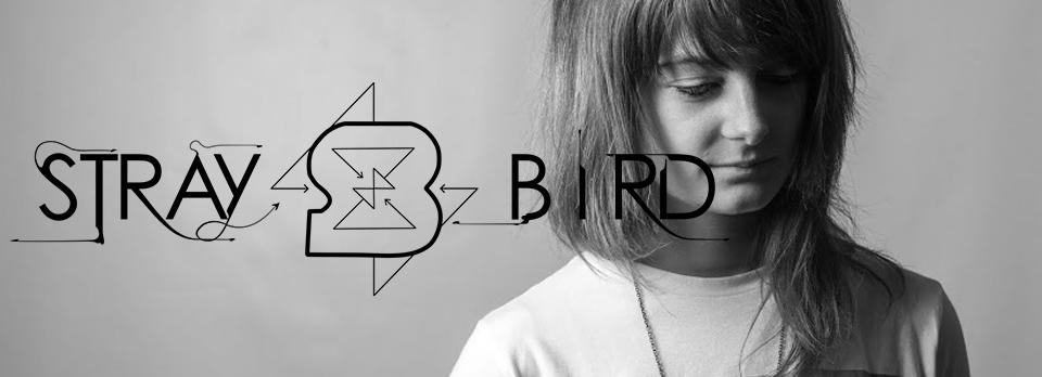 banner_straybird